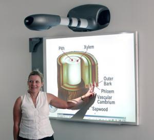 A tela de projeção, Whiteboard interativo, smartboard, smartscreen, PH-1500-101S