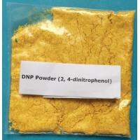 Buy cheap Medical Weight Loss Powder 200-087-7 2,4-DNP Organic Compound product