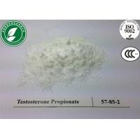 China CAS 57-85-2 99%Min Anabolic Steroids Testosterone Propionate for muscle growth wholesale