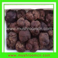 Buy cheap Fresh Truffle product