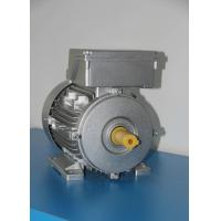China 50Hz Frequency High Speed BLDC Motor , AC Asynchronous Motor Attractive Appearance on sale