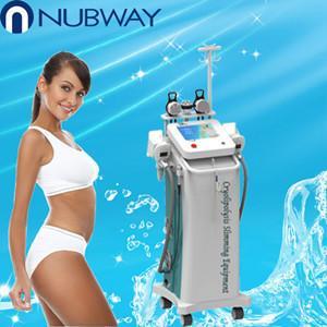 Buy cheap 5 poignées RFcryolipolysis amincissant l'équipement de beauté de machine pour la clinique de beauté product