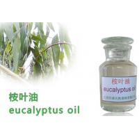 Buy cheap Medicinal essential oil ,Eucalyptus oil,Herbs Extract,herbal extract product