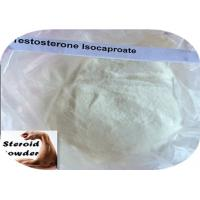 China 15262-86-9 Muscle Gain Steroids Testosterone Isocaproate For Male Sexual Dysfunction wholesale