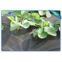 Buy cheap Seasame Dot PP Lanscape Groud Cover Weed Barrier Fabric Non Woven Biodegradable product