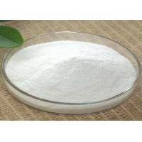 Quality Theobromine / Cocoa Weight Loss Steroids Powder CAS 83-67-0 For Sexy Figure for sale