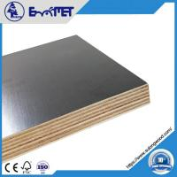 Buy cheap Film-coated Plywood, 9mm Hardwood Core WBP Glue 2-time Hot Press product