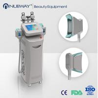 Buy cheap cryolipolysis rf beauty machine,cryolipolysis vacuum slimming equipment product