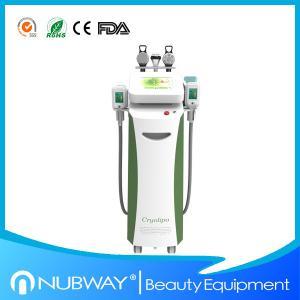 Buy cheap Grosse machine de congélation de 5 poignées/Cryolipolysis amincissant la machine product