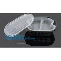 China Healthy Plastic Food Storage Box from Freezer to Microwave,lunch box 2 compartment hot microwave food container bagease on sale