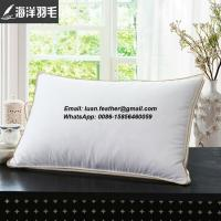 China Hotel goose feather and down pillow, goose feather pillow, luxury hotel pillow-50*90cm on sale