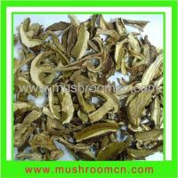 Buy cheap Hot sale white king bolete product