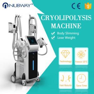China factory price 4 handles -15oC Vacuum cryolipolysis fat reduction machine on sale