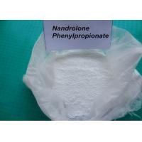 62-90-8 Nandrolone Phenylpropionate / Deca Durabolin Injection For Bodybuilding