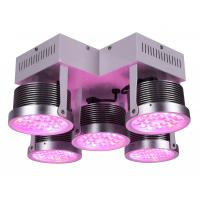 China 3yrsHigh Efficient Full Spectrum250W LED Grow Light for Medical Plants Vegwtable and Bloom Indoor Plant 3 Years Warranty wholesale