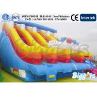 Buy cheap Rainbow Inflatable Water Slide And Water Pool , Inflatable Water Park For Adults product