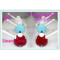 Buy cheap ABS Ionic Spa Facial Steamer , Micro Mist Hair Steamer Of Magnetized Water product