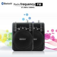 China NEWGOOD Bluetooth Voice Amplifier Speaker with Wireless Headset Microphone FM Radio MP3 Player Recorder on sale