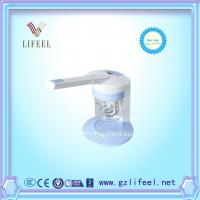 China ion vapour steamer facial steamer home use beauty equipment wholesale