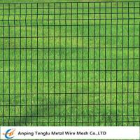 Buy cheap Euro Fence|Welded Wire Mesh Fencing 50x50mm by PVC Coated Wire product