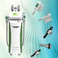 China Best quality cryolipolysis body slimming beauty equipment on sale
