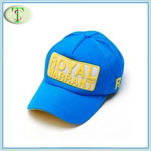 China chapeau de casquette de baseball de 5 panneaux (BC-009) wholesale