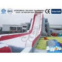 China Adult Beach Giant Inflatable Water Slide , Inflatable Beach Slide on sale