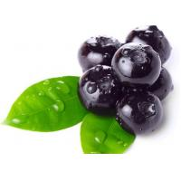 China Anti Diseases Vaccinium Bilberry Extract Powder Antioxidant Food Supplements on sale