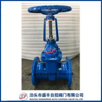 China Rising Stem ductile iron cast iron resilient seated gate valve on sale