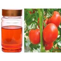China Tomato Seed Oil on sale