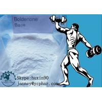 Buy cheap 99% Purity White Powder Boldenone Steroid for Body Building CAS 846-48-0 product