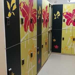 El gimnasio E - cierre la impresión en color del armario de almacenamiento del zapato para los clubs mayores mayores del BALNEARIO