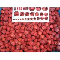 China IQF Frozen Strawberry Dice on sale