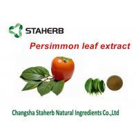 Buy cheap Persimmon Leaf Extract Pure Natural Plant Extracts Folium Kaki Extract Powder product
