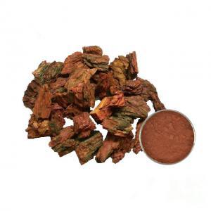 China Proanthocyanidins 95% OPC Pine Bark Extract Powder Anti Inflammatory on sale