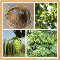Buy cheap Hops Extract/Hops Flower Extract/Humulus Lupulus Extract product