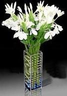 Buy cheap Acrylic Flower Display/ Acrylic Flower Holder/ Acrylic Flower Stand product