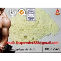 Buy cheap Pharmaceutical Raw Material Anabolic Steroids Trenbolone Acetate Powder CAS 10161-34-9 product