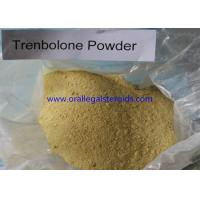 Quality Anabolic 99% Assay Trenbolone Powder 100mg 10161 33 8 For Weight Loss And Increase Muscle for sale