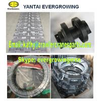 Undercarriage Parts for FUWA CC40 Crawler Crane