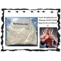 Buy cheap Oral Local Anesthetic Drugs Dyclonine Hydrochloride / Procainamide HCl CAS 536-43-6 product