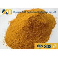 Dried Feed Powder Corn Gluten Meal Animal Feed For Direct Additive Use