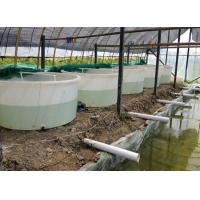 Indoor fish farming images images of indoor fish farming for Indoor fish farming