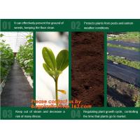 Buy cheap Agricultural plastic ground cover weed mat, pp weed control mat, for greenhouse and outer use,ground cover, weed mat, ma product