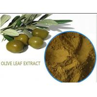 China Organic Olive Leaf Extract For High Blood Pressure ,  Pure Olive Leaf Extract Super Strength on sale