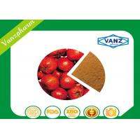 3% Hawthorn Fruit Extract  Natural Herbal Extracts For Anti Blood Pressure