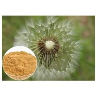 China Brown powder Natural Anti Inflammatory Supplements Extracted from Dandelion Root on sale