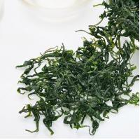 Buy cheap Chinese Kuding Herbal Tea For Lowering Cholesterol, High Blood Pressure product