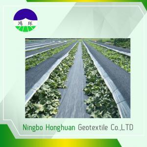 China Черное анти- - полипропилен ткани Geotextile засорителя разделенный 100gsm сплетенный фильмом wholesale