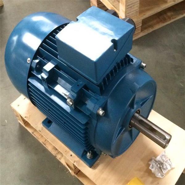 13 16kw Yd Multi Speed Electric Motor Variable Poles